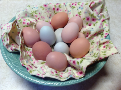 Happy Chickens Make Beautiful Eggs