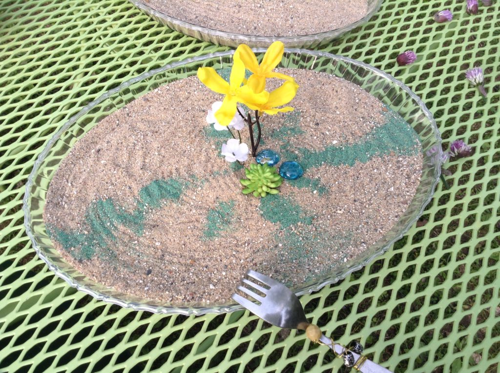 how to make mini zen garden for girl scouts