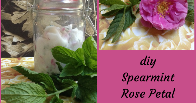 Spearmint Rose Petal Body Scrub